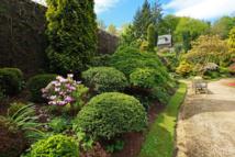 Juin : alerte aux pollens